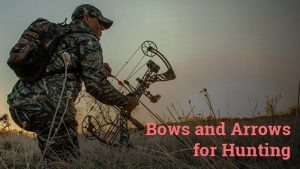 bows and arrows for hunting