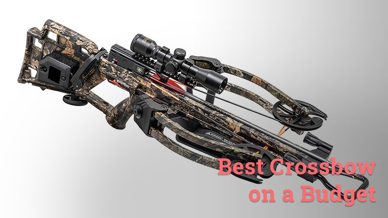 Best crossbow on a budget