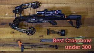 best crossbow under 300