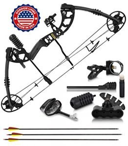 2020 Compound Bow and Arrow